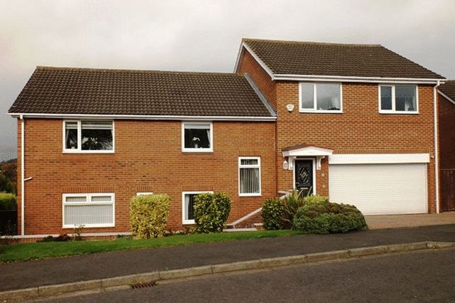 Thumbnail Detached house for sale in Bankside, Morpeth
