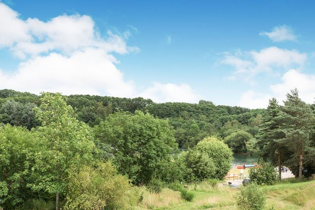 Setting of Mere View, Astbury Mere, Congleton, Cheshire CW12