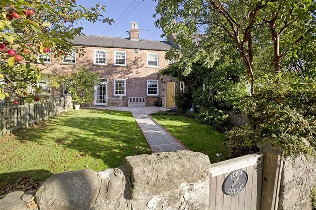 Thumbnail Cottage for sale in Main Street, Staveley, Knaresborough, North Yorkshire