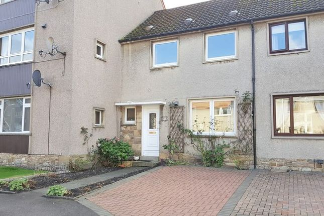 Thumbnail Terraced house to rent in Orchardgate, Cupar, Fife