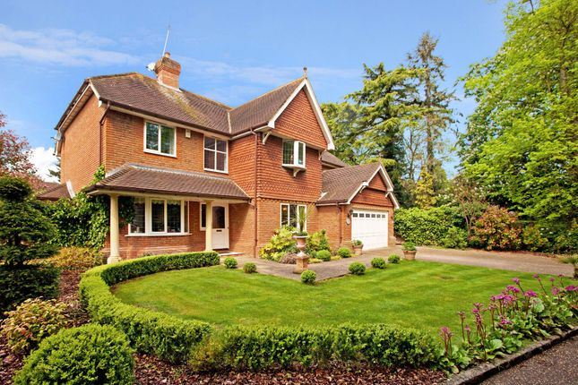 5 bed detached house for sale in Bath Road, Maidenhead