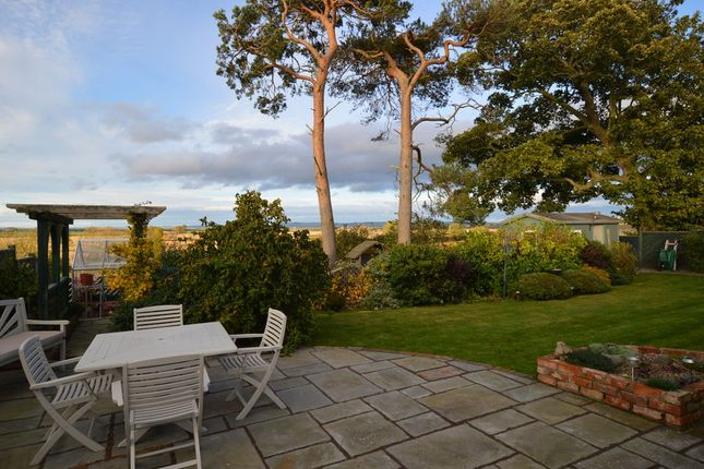 Thumbnail Property for sale in Mount Carmel, Norham, Berwick Upon Tweed, Northumberland