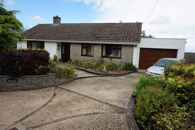 Thumbnail Bungalow for sale in Knapp, Nr North Curry, Taunton