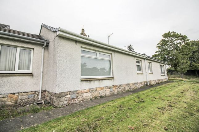 Thumbnail Terraced bungalow for sale in 14 Kirk Wynd, Stirling