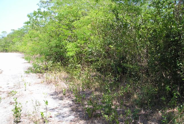 Land for sale in Waterfront Lot: Bahama Sound 18A, The Bahamas