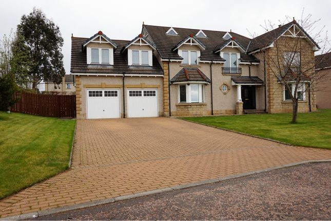 Thumbnail Detached house for sale in Osprey Crescent, Dundee