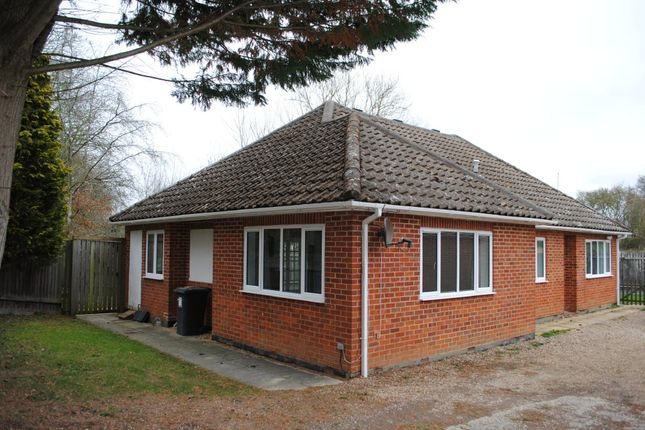 Thumbnail Detached bungalow to rent in Rye Common Lane, Crondall, Farnham