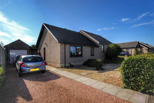 Thumbnail Semi-detached bungalow for sale in 3, Pitcairn Drive, Balmullo, Fife