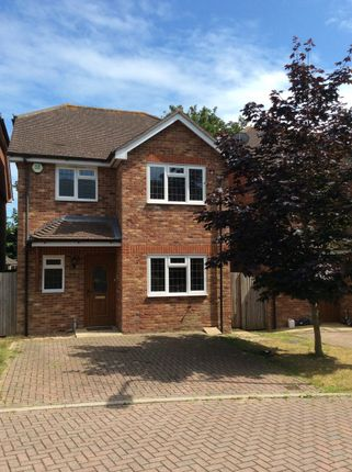Thumbnail Detached house to rent in Rafati Way, Bexhill-On-Sea, East Sussex