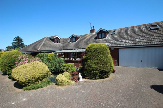 Thumbnail Detached house for sale in Mill Road, Reedham, Norwich