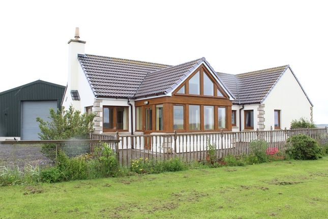 Thumbnail Bungalow for sale in Watten, Wick