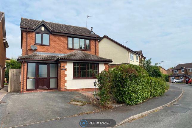 3 bed detached house to rent in Pilgrims Way, Stenson Fields, Derby DE24