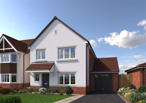 Thumbnail Detached house for sale in Cae Celyn, Maes Gwern, Mold, Flintshire
