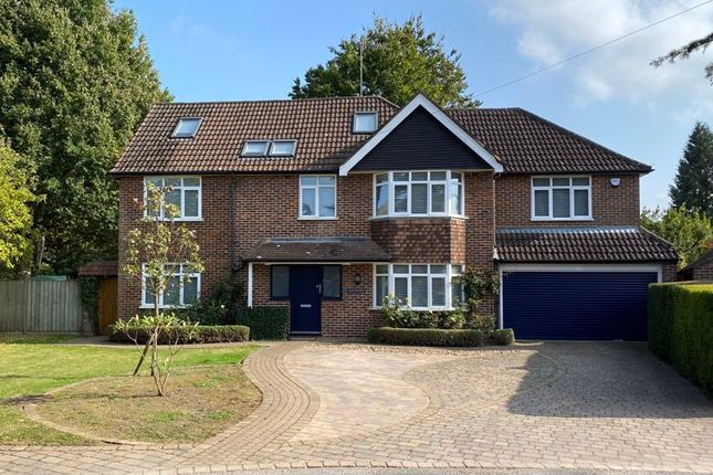 Thumbnail Detached house to rent in Horsell Park, Horsell, Woking