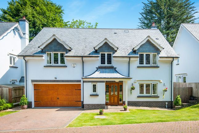 Thumbnail Detached house for sale in Clyst Hayes Gardens, Budleigh Salterton