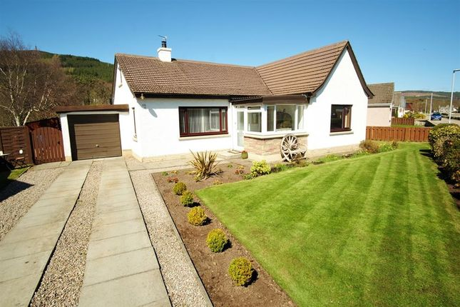 Thumbnail Detached house for sale in Ferry Road, Golspie