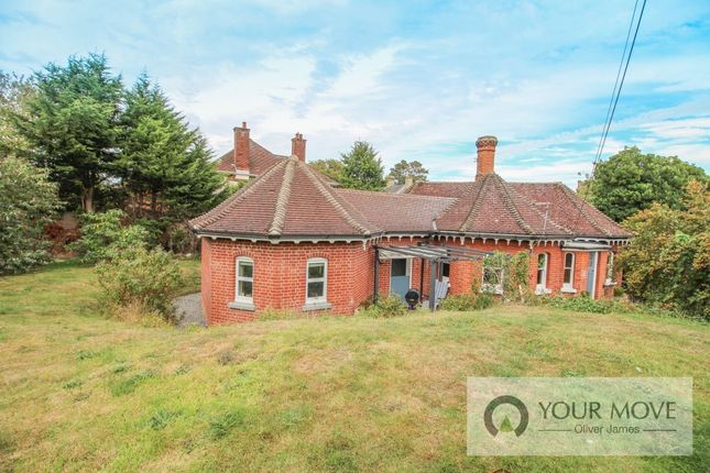 Thumbnail 3 bed bungalow to rent in London Road, Beccles