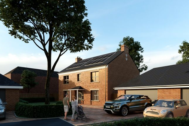 Thumbnail Detached house for sale in The Paddocks, Full Sutton