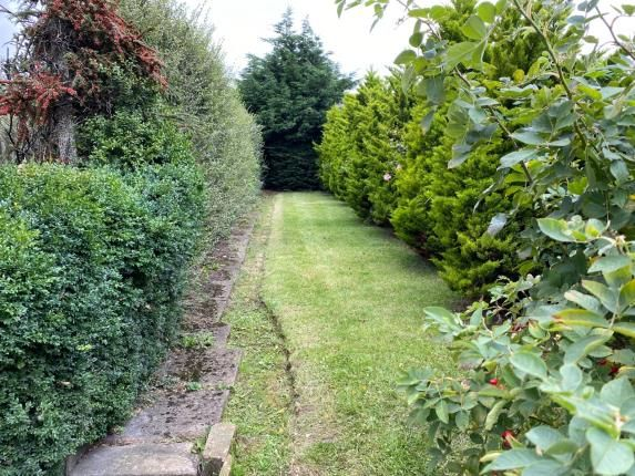 Garden of Park Avenue, Middlesbrough, Teesville TS6