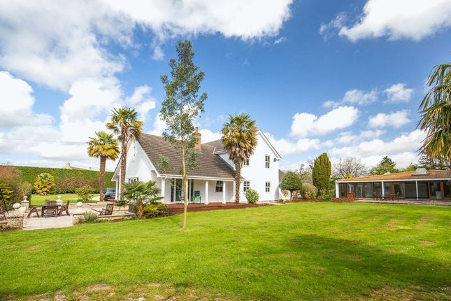 Thumbnail Detached house for sale in Newtown, West Pennard, Glastonbury