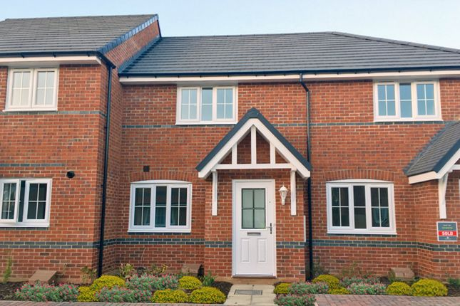 "Thumbnail Terraced house for sale in ""Newton"" at Morgan Drive, Whitworth, Spennymoor"