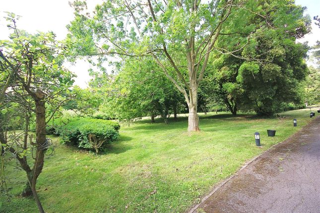 Scenic Driveway: of Kingswood House & Queenswood, Clay Hill, Enfield EN2