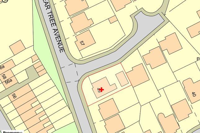 Plot Map of Pear Tree Avenue, Coppull, Chorley, Lancashire PR7