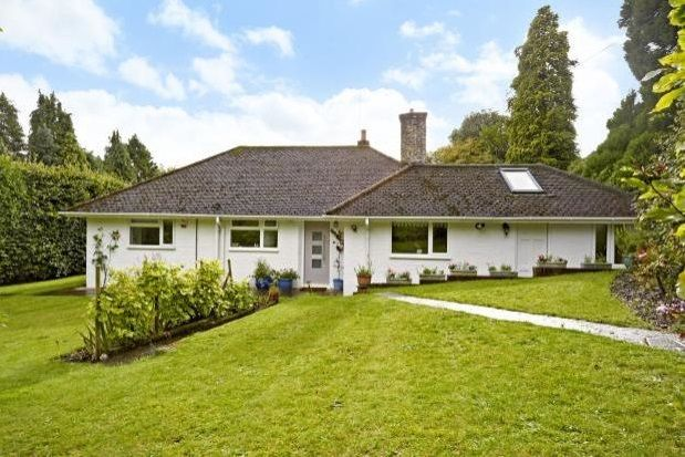Thumbnail Bungalow to rent in Veras Walk, Storrington, Pulborough