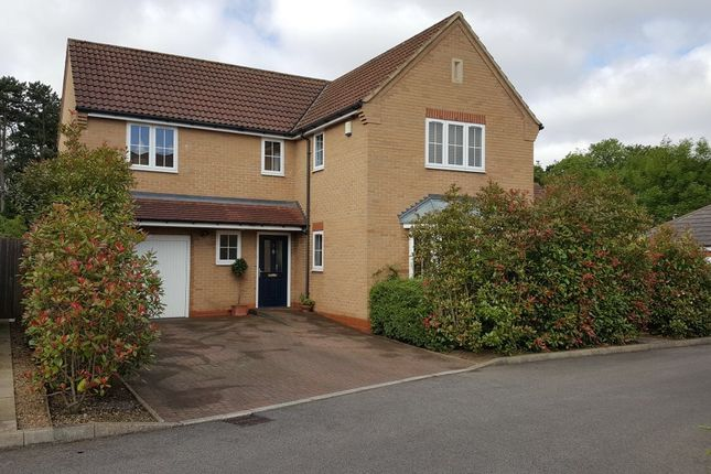 Thumbnail Detached house for sale in Humberstone Park Close, Leicester