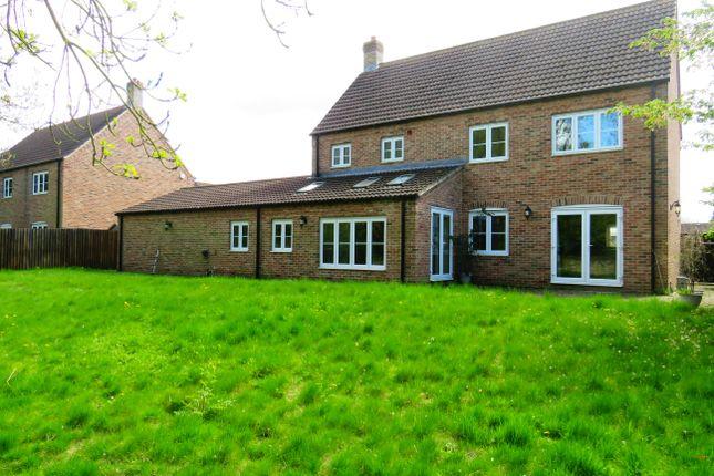 Garden of Long Lane, Feltwell, Thetford IP26