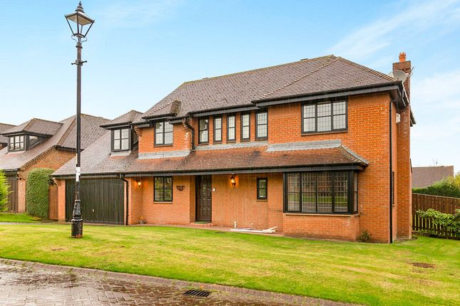Thumbnail Detached house to rent in Rosemount, Pity Me, Durham