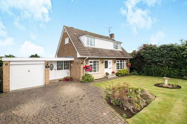 Thumbnail Detached house for sale in Eastfield Crescent, Laughton, Sheffield