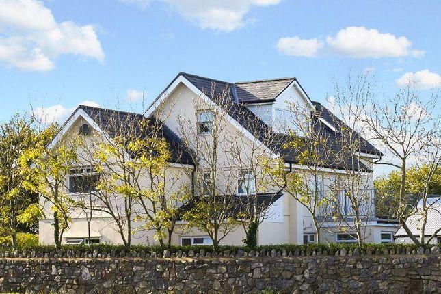 Thumbnail Detached house for sale in Pilton, Rhossili, Swansea
