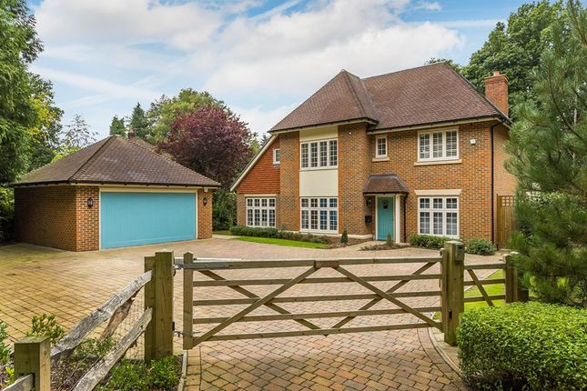 Thumbnail Detached house for sale in West Hill, Dormans Park, East Grinstead