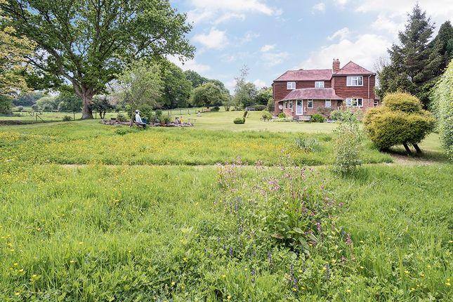Property To Rent In Peasmarsh