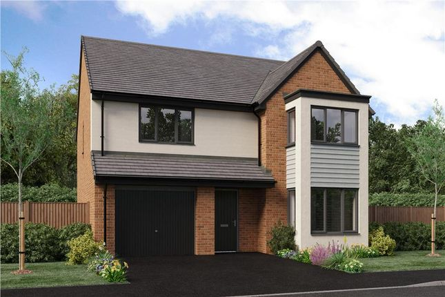 "Thumbnail Detached house for sale in ""The Chadwick"" at Bristlecone, Sunderland"