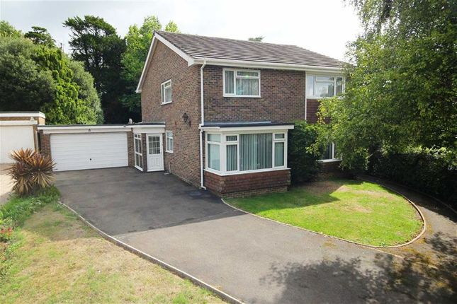 Thumbnail Detached house for sale in Longlands Spinney, Charmandean, Worthing, West Sussex