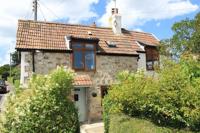 Thumbnail Detached house to rent in Combe Hill, Combe St. Nicholas, Chard