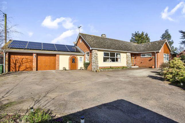 Thumbnail Detached bungalow for sale in Elmham Road, Beetley, Dereham