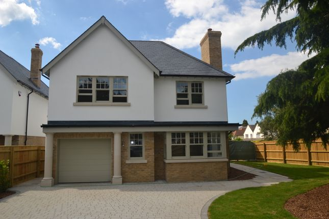 Thumbnail Detached house for sale in 5A Canford Cliffs Avenue, Canford Cliffs