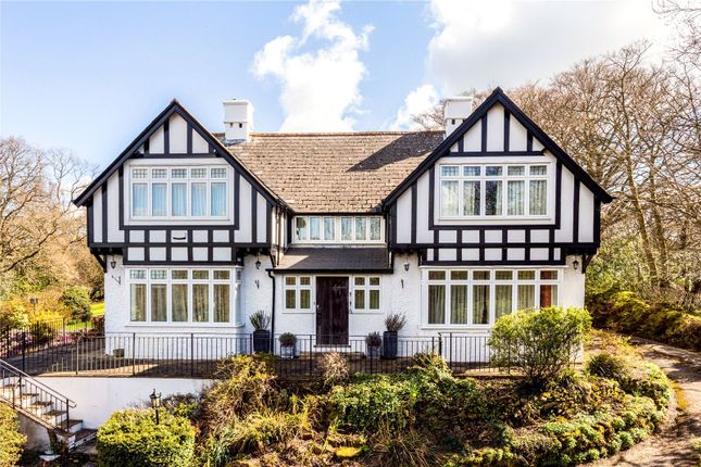 Thumbnail Detached house for sale in Best Beech Hill, Wadhurst, East Sussex