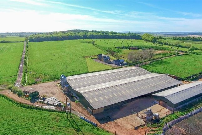 Thumbnail Detached house for sale in Stoneybrook Farm, Lees Hill, Brampton, Cumbria