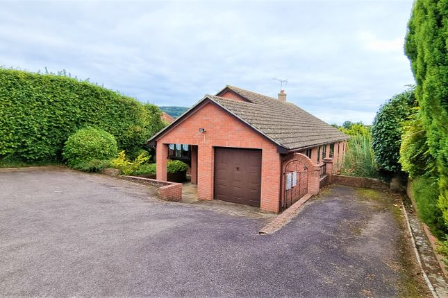 Thumbnail Detached bungalow for sale in Stevens Lane, Sidmouth