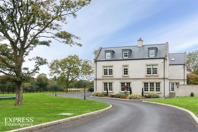 Thumbnail Detached house for sale in Gilford Road, Portadown, Craigavon, County Armagh