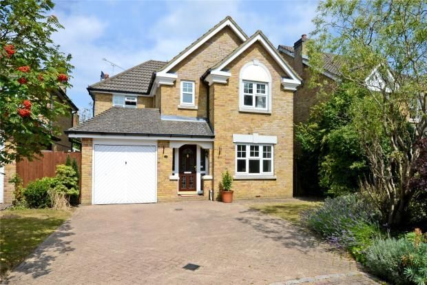 Thumbnail Detached house to rent in Darracott Close, Camberley, Surrey