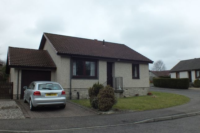 Thumbnail Bungalow to rent in Coldstream Avenue, Perth