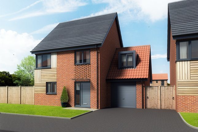Thumbnail Detached house for sale in Maple Park, Long Stratton, Norwich
