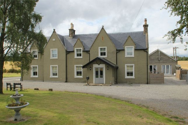 Thumbnail Detached house for sale in Logie Easter, Invergordon, Highland