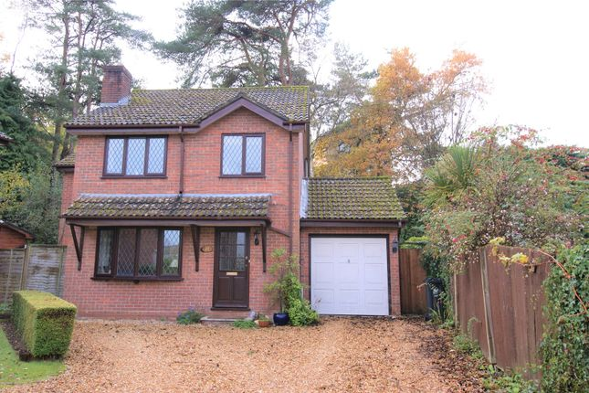 Thumbnail Detached house for sale in Wyatts Lane, Corfe Mullen, Wimborne, Dorset