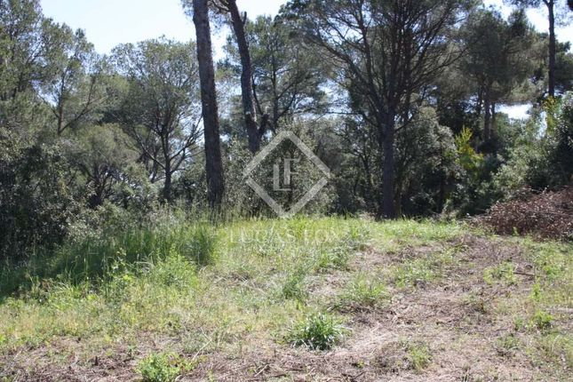Thumbnail Land for sale in Spain, Costa Brava, Llafranc / Calella / Tamariu, Lfcb829
